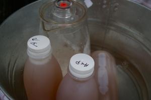 cold pressed apple juice