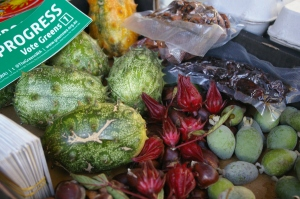 horned cucumbers and rosellas